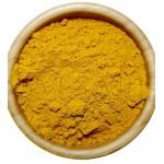 CURCUMA rizoma polvere 100 gr