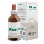 BRIOMIX 100 ml