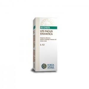 FAGUS SYLVATICA LES 50 ml. ECOSOL